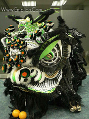Southern Lion Dance | Beyond the Pride Lion Dance Exhibition